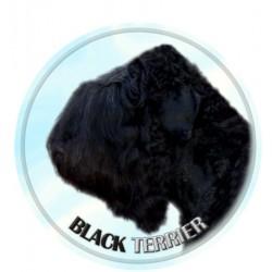 Černý ruský terier