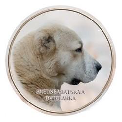 Strředoasijský pastevecký pes