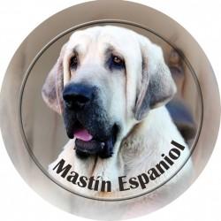 Španělský mastin