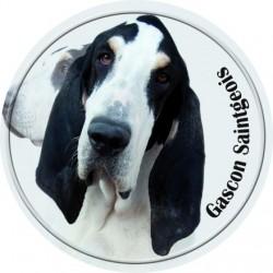 Gaskoňsko-saintgeoiský honič