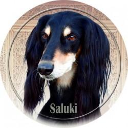 Saluki - Perský chrt