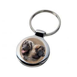 Estrelský pastevecký pes