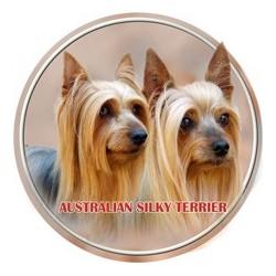 Australský silky teriér