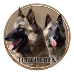 Belgický ovčák - Tervueren