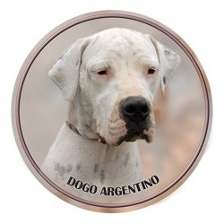 Argentínska doga