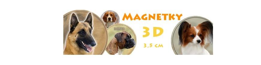 Magnetky 3D
